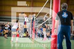 www.darioimparato.com - torneo pallavolo web-560