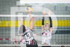 www.darioimparato.com - torneo pallavolo web-567