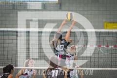 www.darioimparato.com - torneo pallavolo web-569