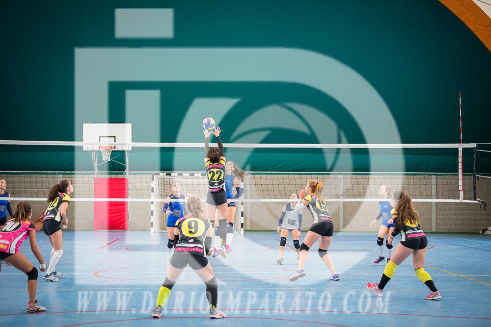 www.darioimparato.com - torneo pallavolo web-225