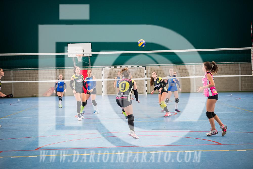 www.darioimparato.com - torneo pallavolo web-230