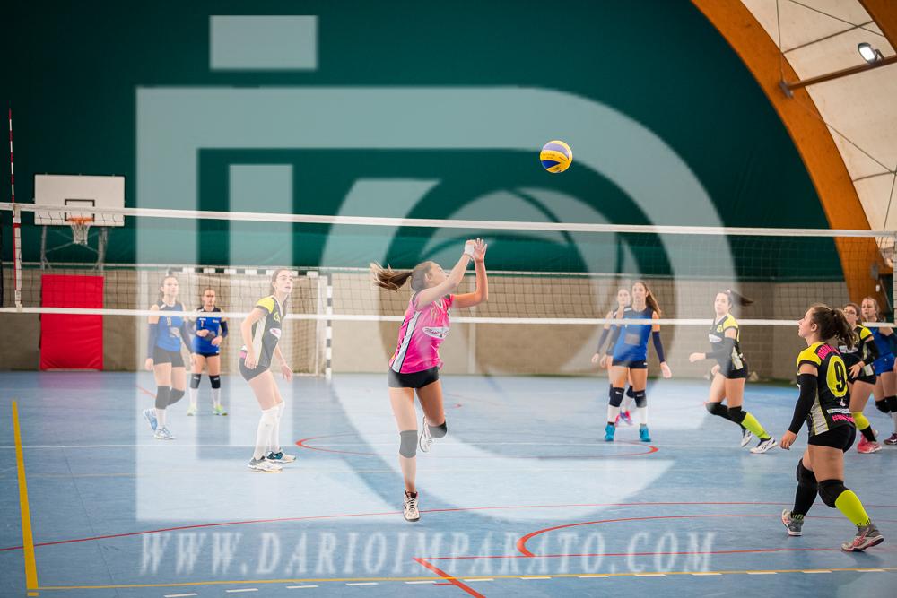 www.darioimparato.com - torneo pallavolo web-237