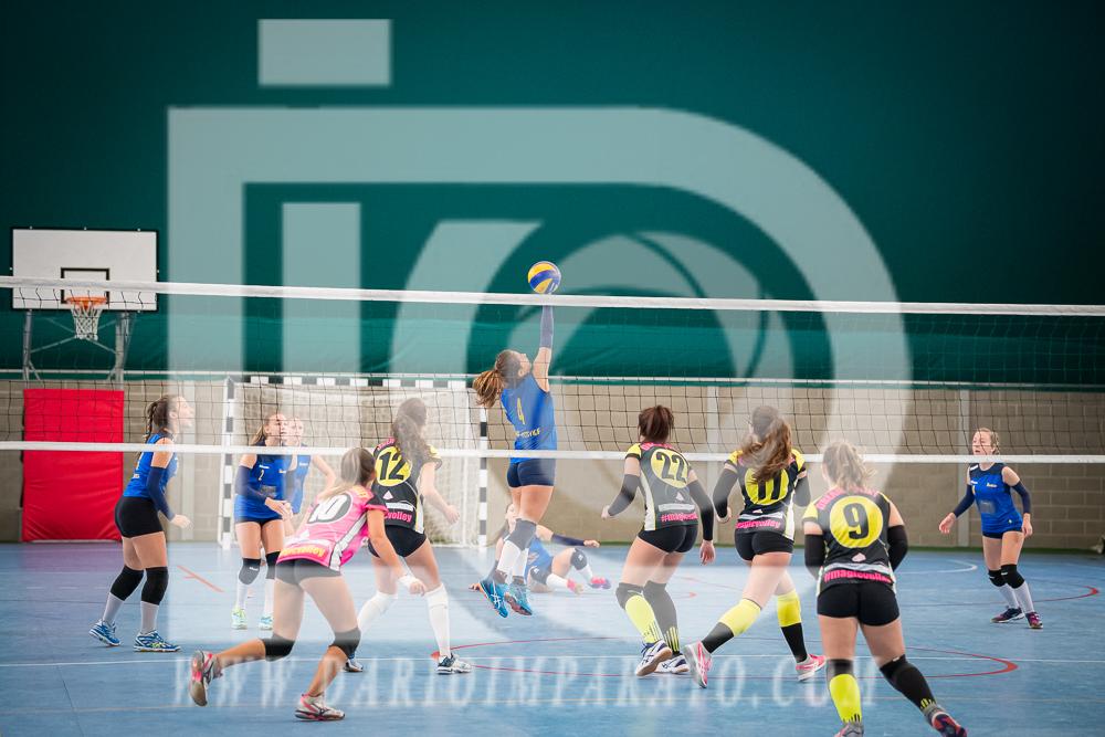 www.darioimparato.com - torneo pallavolo web-245