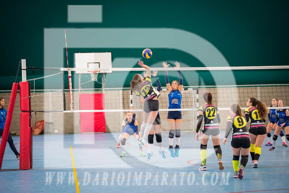 www.darioimparato.com - torneo pallavolo web-247