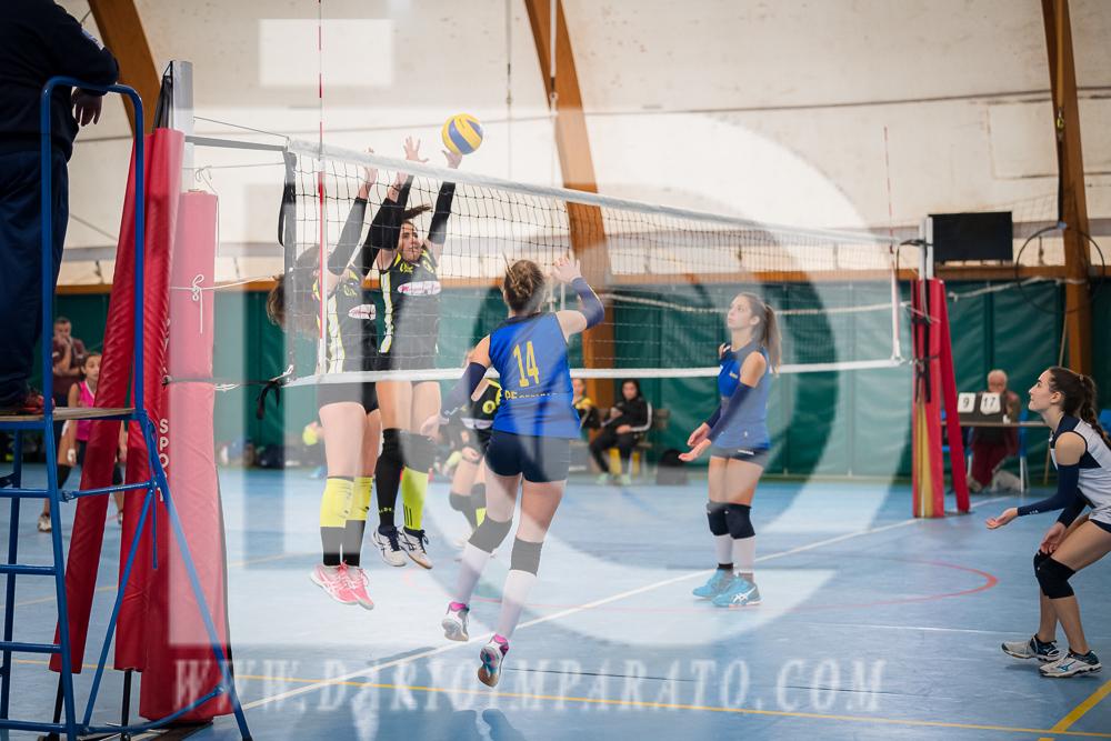 www.darioimparato.com - torneo pallavolo web-261