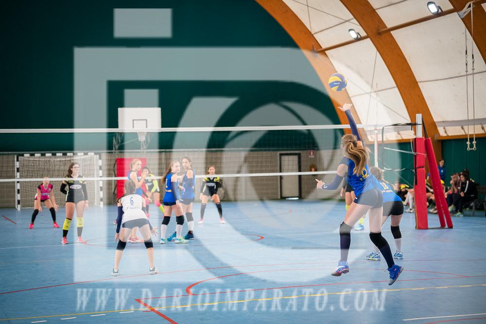 www.darioimparato.com - torneo pallavolo web-272