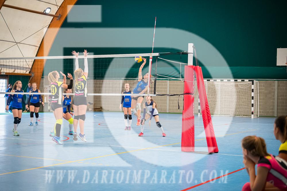 www.darioimparato.com - torneo pallavolo web-290