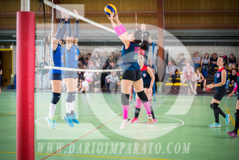 www.darioimparato.com - torneo pallavolo web-454