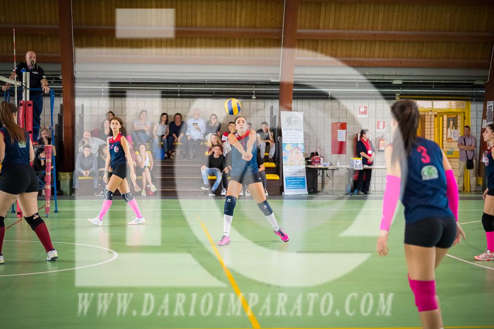 www.darioimparato.com - torneo pallavolo web-461